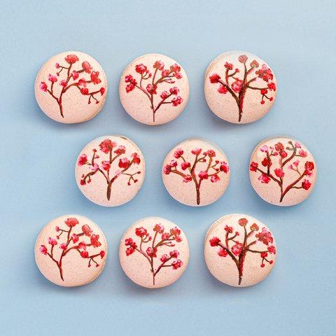 Sakura Hand-painted Macarons